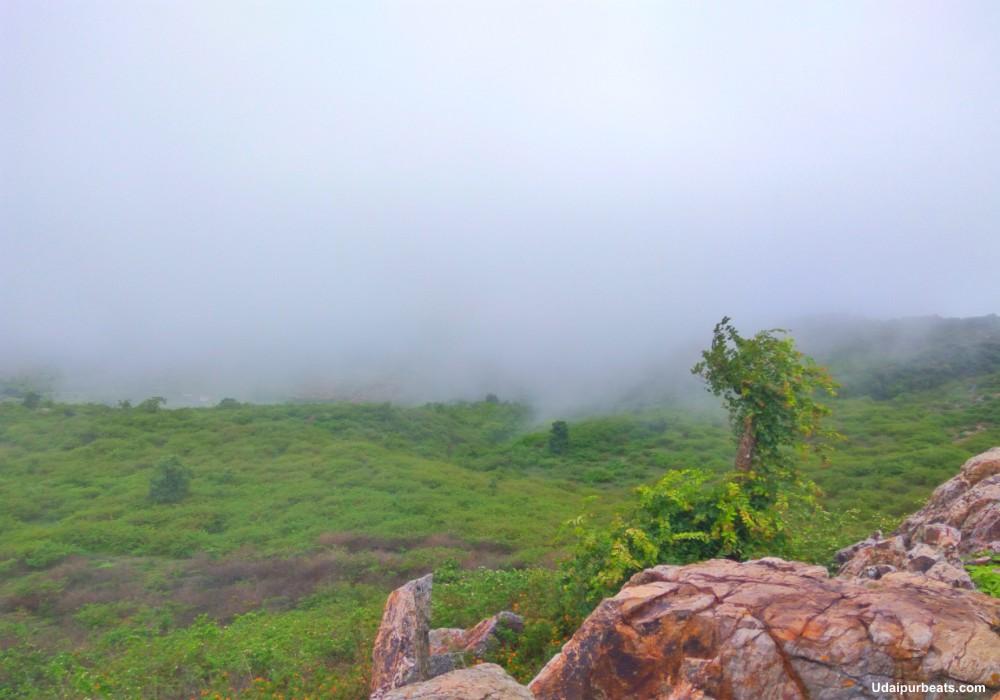 view at peepliya ji
