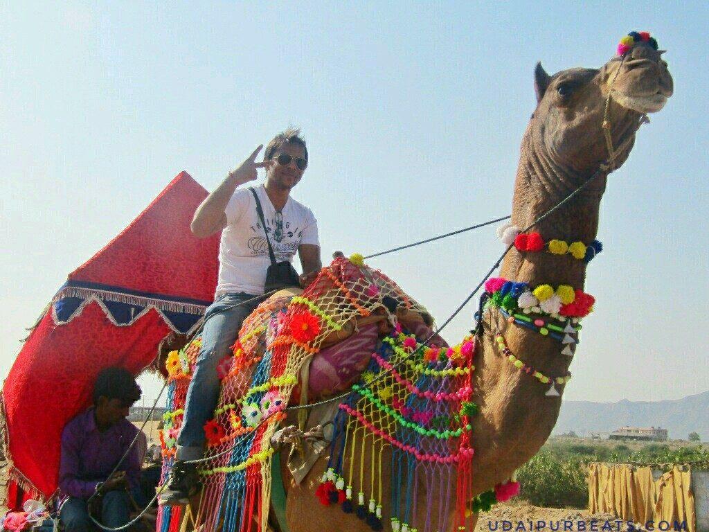 camel safari pushkar fair