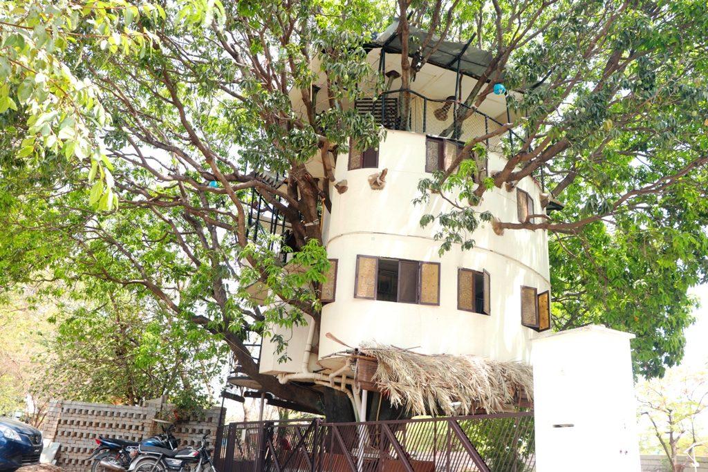 mango treehouse udaipur